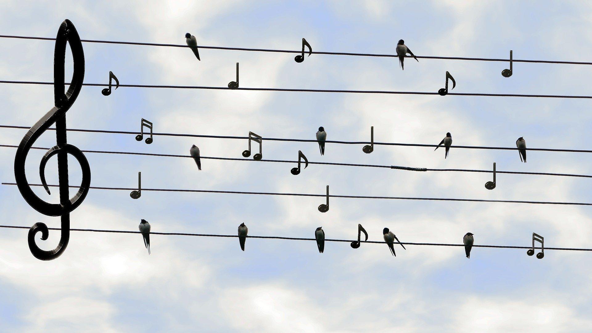 chant les couleurs de la joie